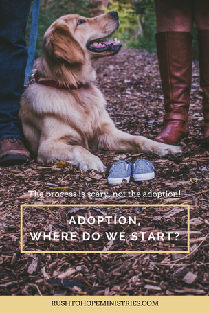 Adoption, Where do we start?