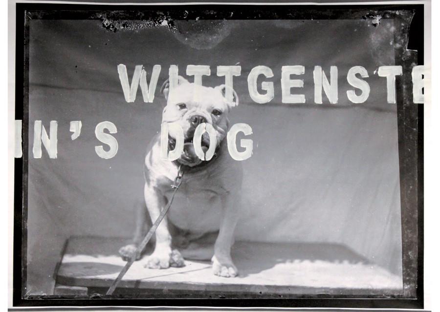 Photowork_WittgensteinsDog_PatrickAdam Jones
