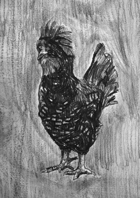 Chickens n Trains