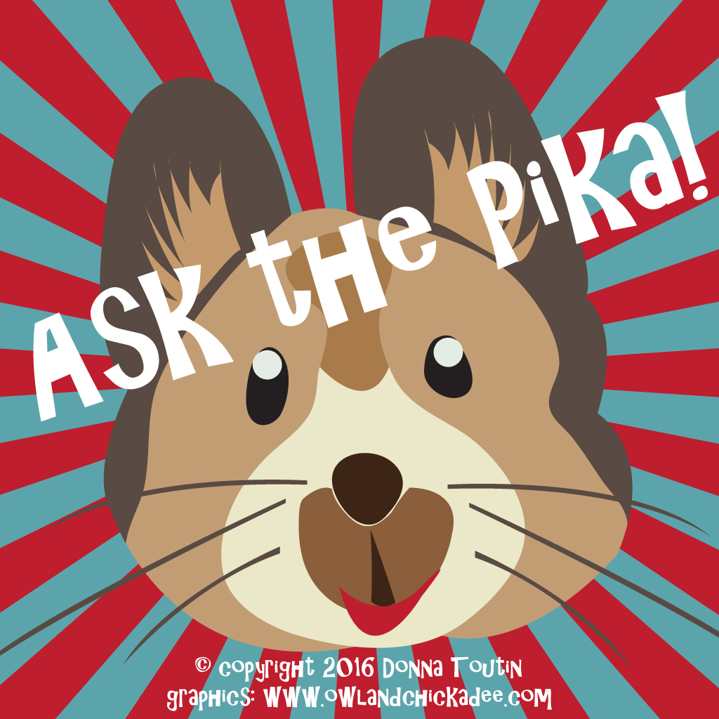 Ask the Pika!