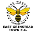 East_Grinstead_Town_F.C._logo.png