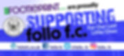 footieprint site graphic.jpg