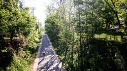 aerial shot of a man riding a bicycle down a path