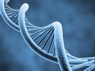 Видео с лекции «Загадки генетики» Спикер - Надежда Мазурова