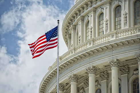 Capitol dome representing Government Pricing, Price Transparency and compliance for pharmaceutical manufacturers