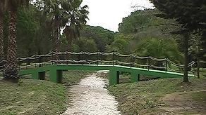 arroyo y puente 2.jpg