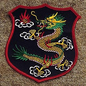 Dragon Shield Patch