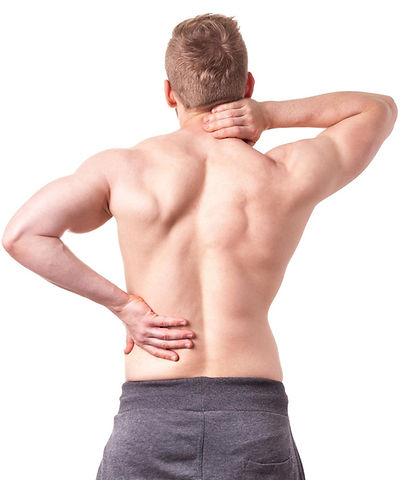 mal di schiena, cervicale, lombalgia, dolori Rapallo
