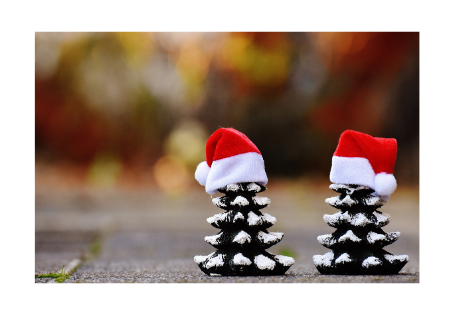 5 Christmas Survival Tips