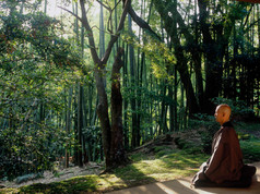 Zen Priest meditating - Kamakura_Japan 2005.JPG