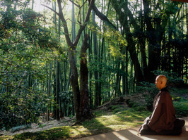Zen Priest meditating - Kamakura_Japan 2005.JPG
