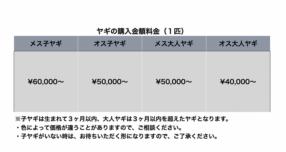 スクリーンショット 2021-09-12 10.33.25.png
