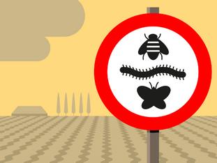 Insecten redden met data science
