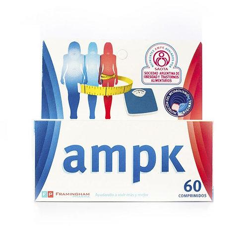 AMPK Comp. x 60