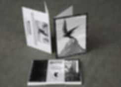 CardSet_Example02.jpg
