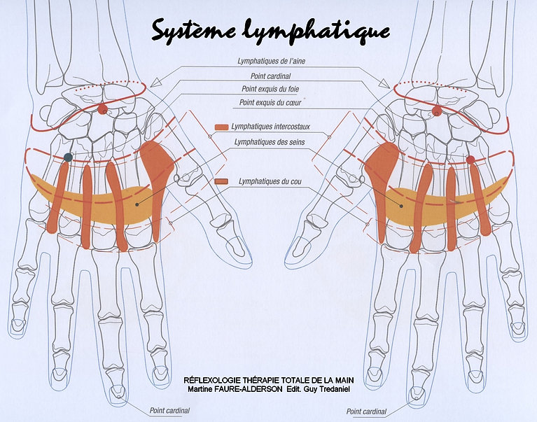 Mains dessus sys lymphatique.jpg