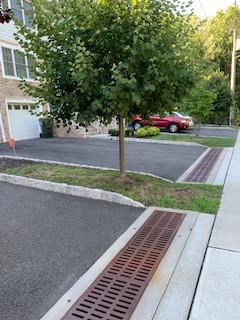 Exterior landscaping and sidewalk.jpg