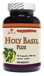 Holy Basil (TULSI )Plus 90/120 Capsule
