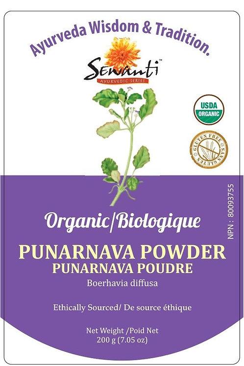 Organic Punarnava Powder