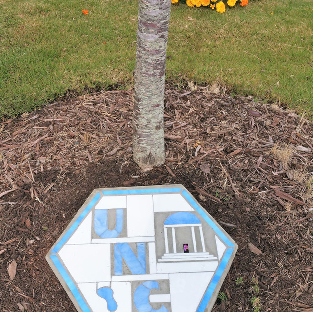 UNC Stepping Stone