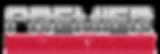 st. bernard logo.png