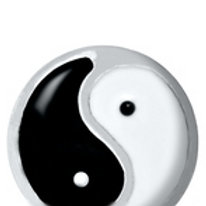 Ying Yang Charm