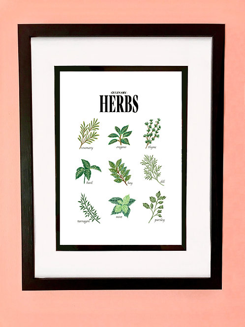 Culinary Herbs Wall Art