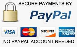 Paypal Payments.jpg