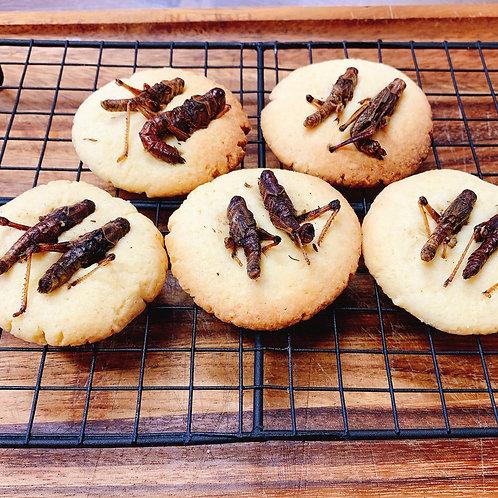 バッタクッキー 1枚(2匹)