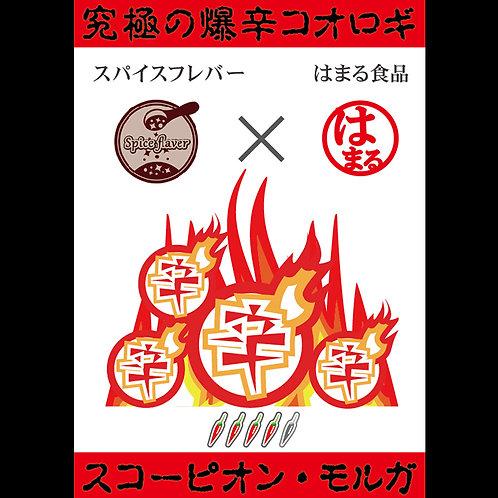 【毒辛】素揚げスコーピオンモルガコオロギ