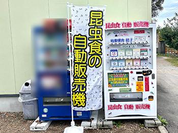 昆虫食の自動販売機②岐阜県くわがた村