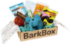 BarkBox1_1.png