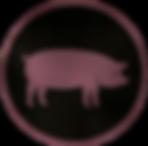 Vision Pork.png