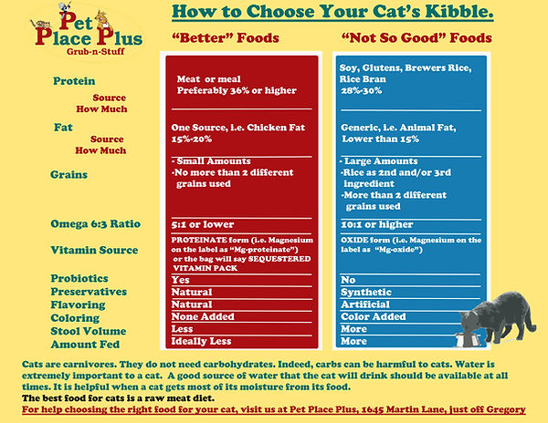 How To Choose Your Cat's Kibble