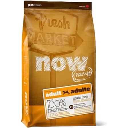 Petcurean Now Grain Free Adult Dry Dog Food