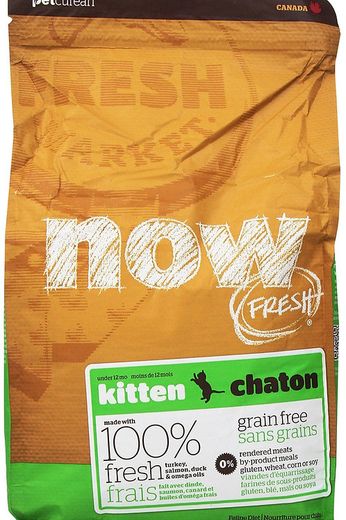 Petcurean Now Grain Free Kitten Dry Cat Food