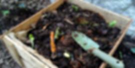 lima-compost-caja-de-frutas-2.png