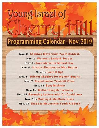 Nov programming.jpg