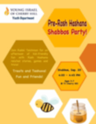 pre-RH shabbos party.jpg