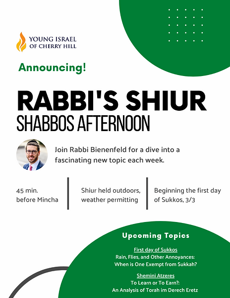 Rabbi Shabbos afternoon shiur.png