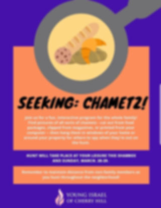Searching chametz.jpg