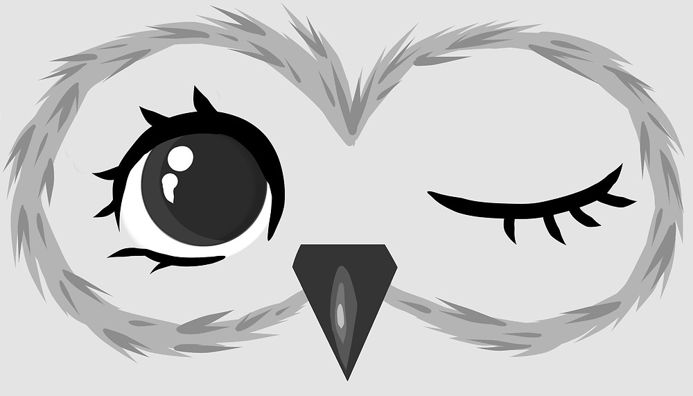 winking owl fabric shop