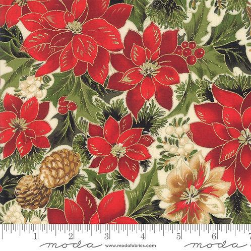 Cardinal Song - Poinsettia
