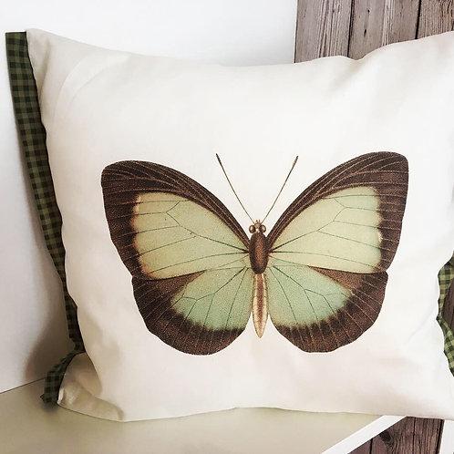 Green butterfly cushion