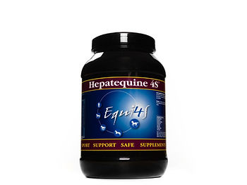 Feed supplement for horses liver Hepateq