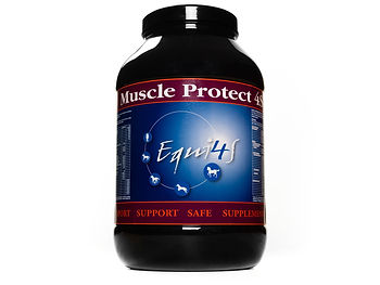 Feed supplement for horses Muscles Muscle Protect 4S