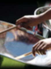 steel-drum-music-clearwater-yacht-club_e
