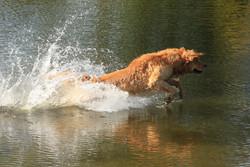 Dega water fun