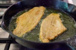 fried-catfish-method-4-1024x683