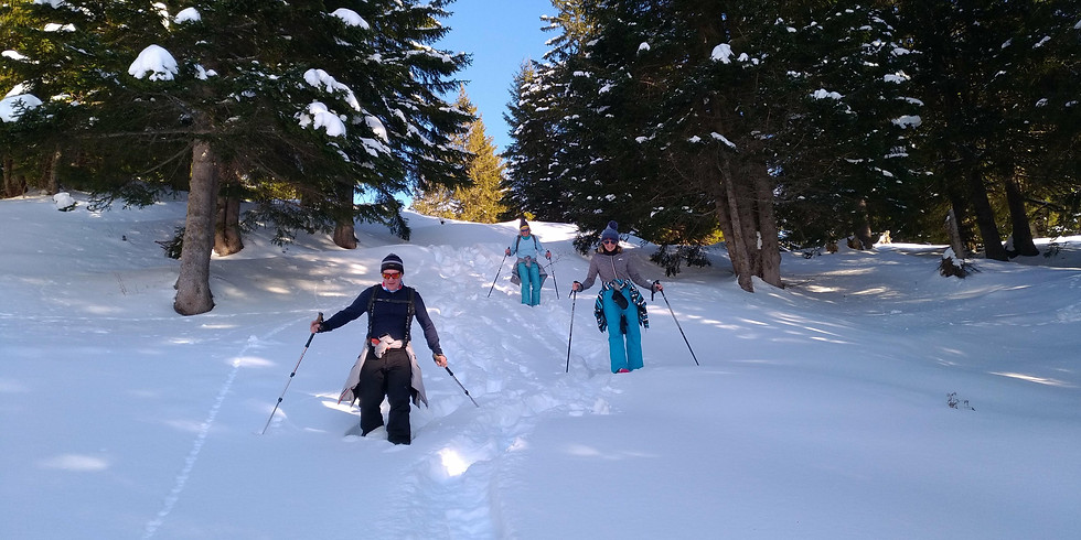 07-08 Mar. / Winter Magic - Snowshoeing adventure in Val de Bagnes